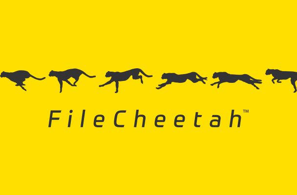 FileCheetah